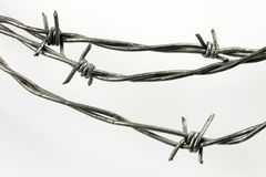 Free Barbed Wire Stock Images - 12595704