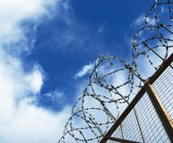 The barbed wire Royalty Free Stock Photo
