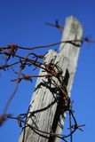 Barbed wire. Fence with a barbed wire royalty free stock photo