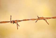 Barbed wire. Beautiful abstract picture of barbed wire Stock Photography