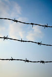 Barbed wire. With a sky in the background Royalty Free Stock Images
