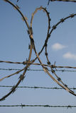 Barbed wire 2 Royalty Free Stock Images