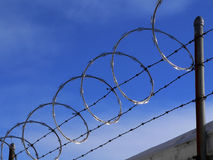 Barbed wire. Fence Stock Images