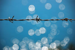 Barbed wire. On a fence with sea reflection behind stock photography