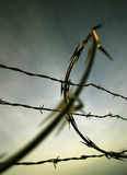 Barbed Wire. East Mooring Basin, Astoria, Oregon royalty free stock photography