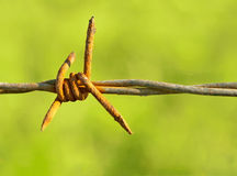 Barbed wire. Old barbed wire. Blured background Royalty Free Stock Photography