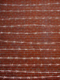 Barbed wire. With a red brick wall background Royalty Free Stock Image
