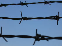 Barbed Wire. Against a blue sky Royalty Free Stock Photos