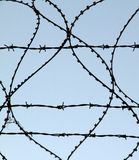 Barbed wire. Funds sky background Stock Photos