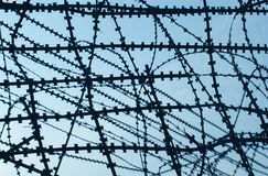 Barbed wire. Royalty Free Stock Image