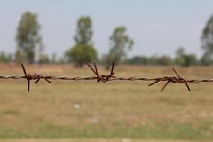 Barbed wire. The old barbed wire fence in a countryside Royalty Free Stock Photography