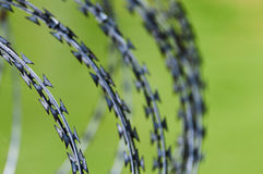 Barbed wire. For protection,  on green  background Royalty Free Stock Photos