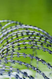 Barbed wire. For protection,  on green  background Royalty Free Stock Photo