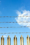 Barbed wire. And a sharp fence Royalty Free Stock Photography