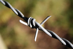 Barbed wire. Closeup of a sharp barbed wire twist Royalty Free Stock Photo