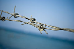 Barbed wire. Close-up of small piece of barbed wire, near the beach in Paralia, Greece royalty free stock photography