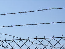 Barbed wire. Barrier made of barbed wire, blue sky stock images