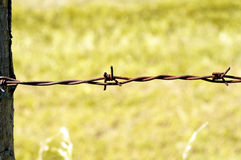 Barbed Wire. Closeup of rusty, oldfashioned barbed wire stock photo