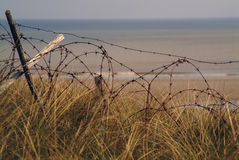 Barbed wire from 2nd. world war d day Royalty Free Stock Photos