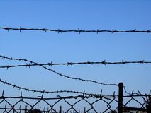 Barbed wire 3 Stock Photo