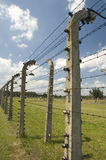 Barbed wire. Many people know the Birkenau camp simply as Auschwitz; it was larger than Auschwitz I, and more people passed through its gates than did those of Stock Photography