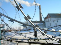Barbed wire. The other side of the freedom Stock Photography