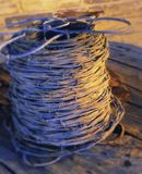 Barbed wire. Stock Images