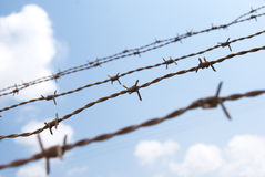 Barbed wire. Against a backdrop of blue sky royalty free stock images