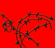 Barbed wire. A black barbed wire on a red background Stock Photos