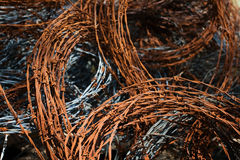 Barbed wire. Old barbed wire, shallow DOF Royalty Free Stock Photos
