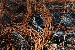 Barbed wire. Old and rusted barbed wire Royalty Free Stock Photos