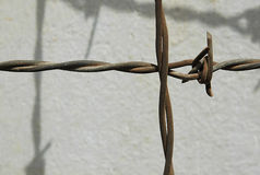 Barbed Wire. Part of a barbed Wire fence stock image