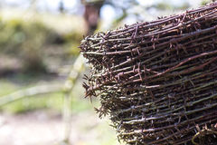 Barbed-wire Στοκ Φωτογραφίες