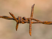 Barbed Wire abstract Stock Photo