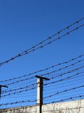 Barbed Wire. Abstract image of the barbed wire Royalty Free Stock Photos