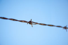 Barbed wire against a blue sky Stock Image