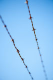 Barbed wire against a blue sky Royalty Free Stock Image