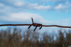 Barbed wire against the blue sky Stock Photo