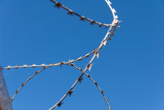 Barbed wire against the blue sky Stock Photography