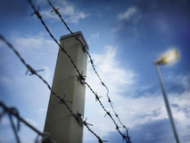 Barbed wire against evening sky Stock Photography