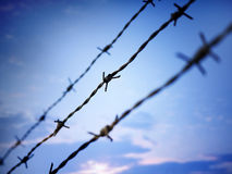 Barbed wire against evening sky Royalty Free Stock Images