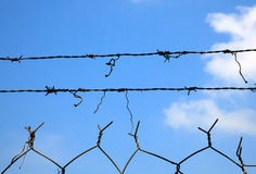 Barbed Wire Against the Open Sky Royalty Free Stock Photo