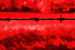 Barbed wire against a red background Stock Image