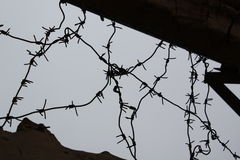 Barbed wire. Against the sky Stock Image