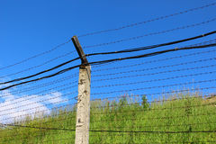 Barbed wire against the sky Stock Photo