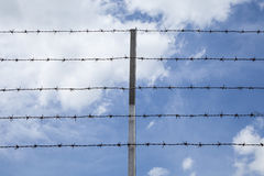 Barbed wire against the sky Royalty Free Stock Photos