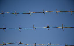 Barbed wire against the sky. Steel barbed wire on a background of blue sky. close-up royalty free stock photo