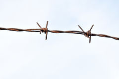 The barbed wire as protection against unauthorized entry into private territory stock photography