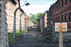 Barbed wire at Auschwitz Royalty Free Stock Image