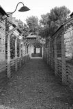 Barbed wire at Auschwitz stock photo